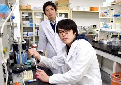 微研で研究するには | 大阪大学...